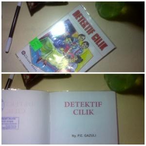 buku dari perpustakaan sekolah